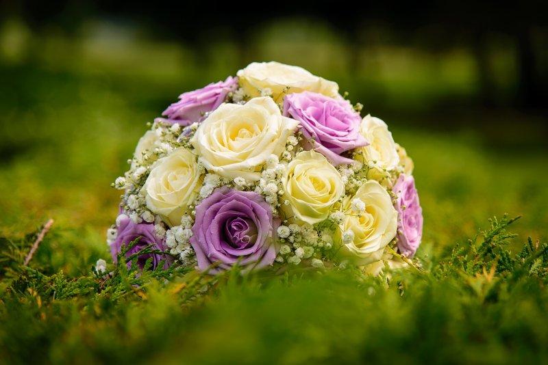 Man geburtstag welche zum blumen schenkt Blumen und