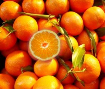 Haben Mandarinen Kerne